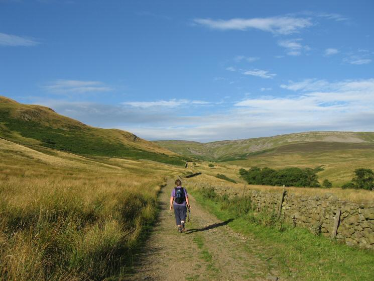 The High Scald Fell track