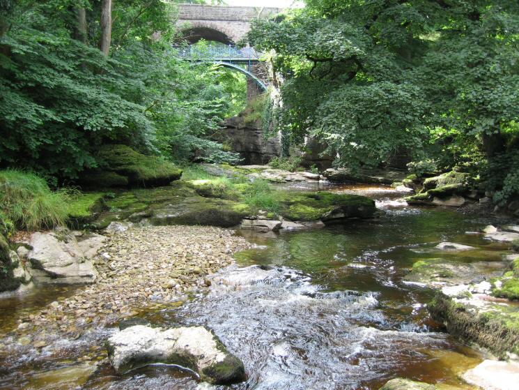 The River Eden and the Millennium footbridge