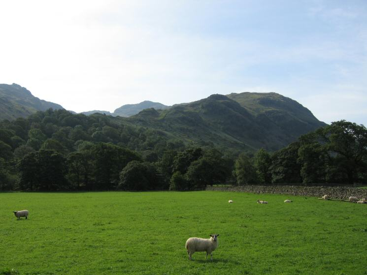 Thornythwaite Fell, our line of ascent
