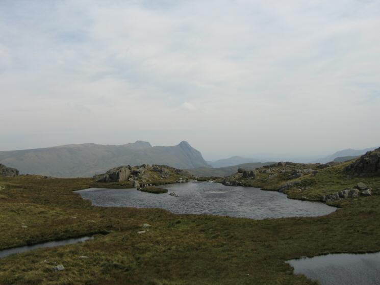 The Langdale Pikes from High House Tarn