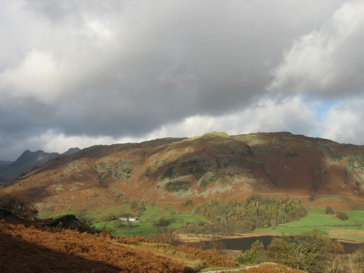 Lingmoor Fell with the Langdale Pikes on the far left and Little Langdale Tarn coming into view below