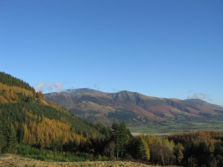 Skiddaw from Whinlatter Forest