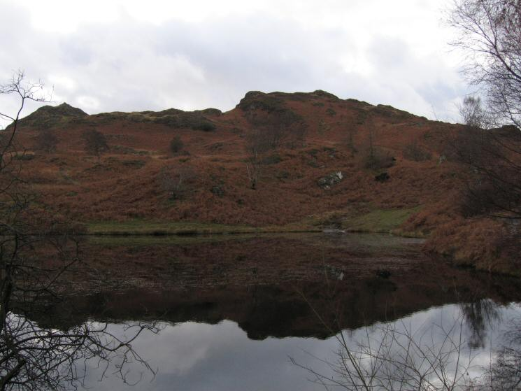 Holme Fell with Ivy Crag on the left from one of the two old reservoirs