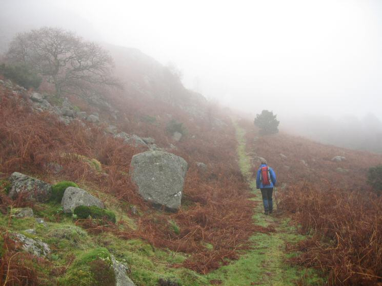 Heading up into the cloud above Fisherground Farm
