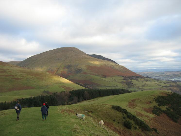 Descending Latrigg's east ridge with Blencathra ahead