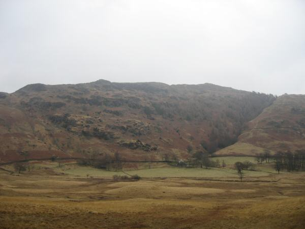 Lingmoor Fell, the path I had ascended is to the right of the tree filled ravine