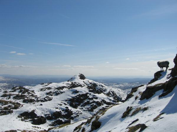Looking back to Loft Crag from our ascent of Pike o' Stickle