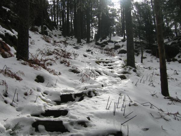 Path to Raven Crag's summit