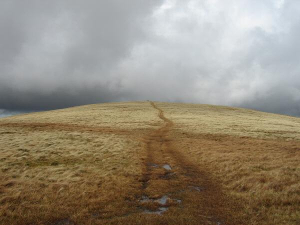 Path to Brae Fell's summit