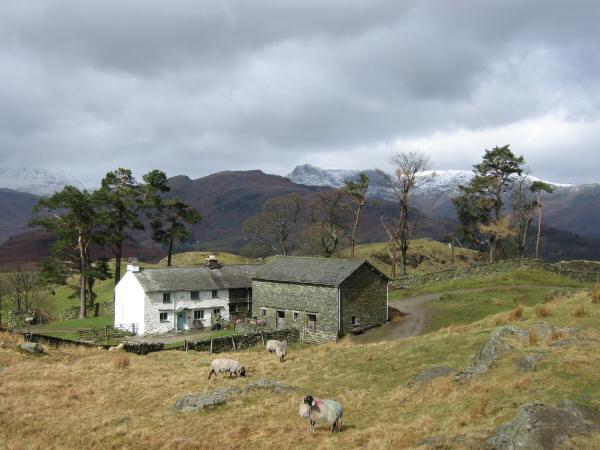 Low Arnside, the dark fell is Lingmoor Fell with snow on the Langdale Pikes behind