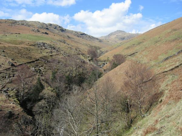 Looking back up the valley of Over Beck. The pointed peak in the centre of the photo is Red Pike (but its summit is hidden from view)