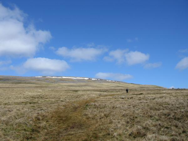 Looking back up towards Cross Fell's summit