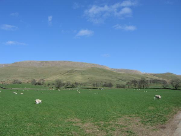 Cross Fell from near Ranbeck