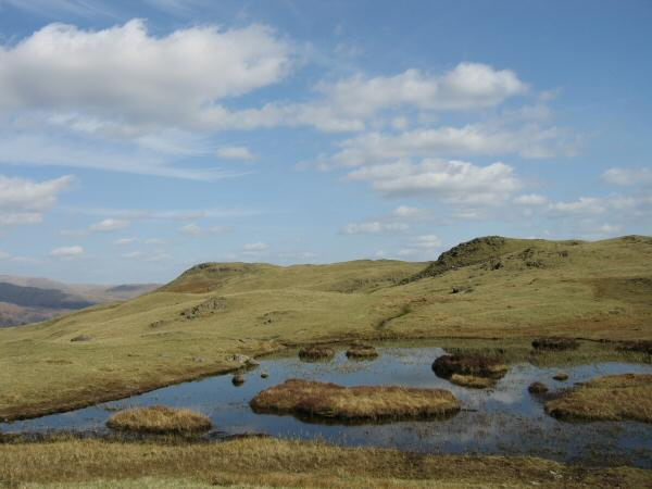 Silver How (left) from one of the tarns near Lang How