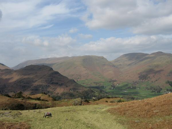 Helm Crag with the Helvellyn ridge behind, Seat Sandal, Fairfield and Great Rigg from the descent to Grasmere from Silver How