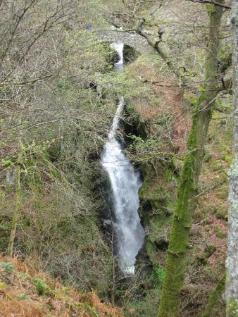 Aira Force seen through the trees