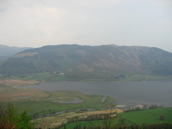 Looking across the head of Bassenthwaite Lake to Whinlatter Forest and Barf