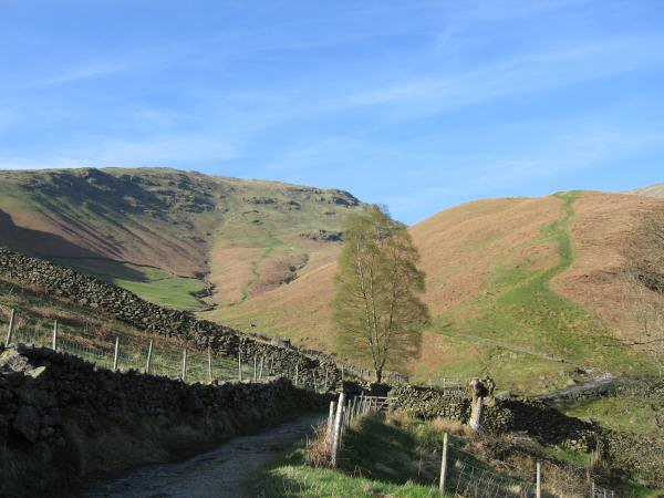 Seat Sandal and Little Tongue (my route of ascent) to the left of the tree and Great Tongue to the right
