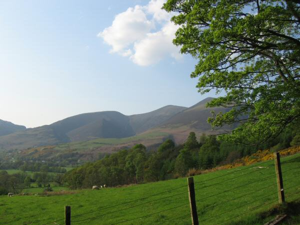 Carl Side, Skiddaw and a glimpse of Little Man from the Cumbria Way