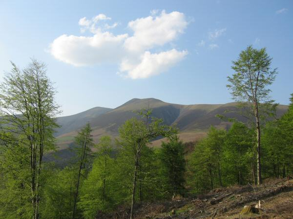 Skiddaw and Skiddaw Little Man from the track round Latrigg
