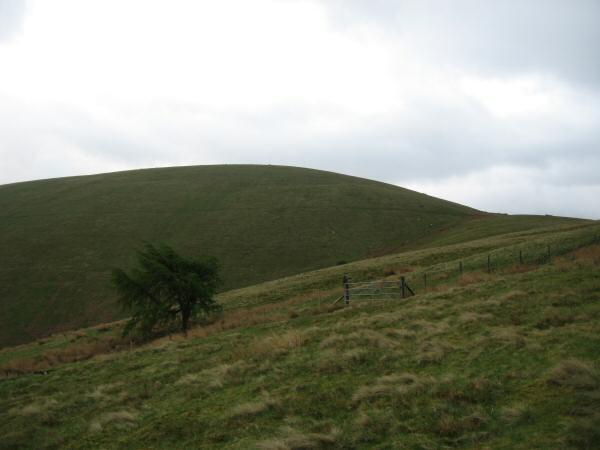 Looking towards Little Mell Fell's summit