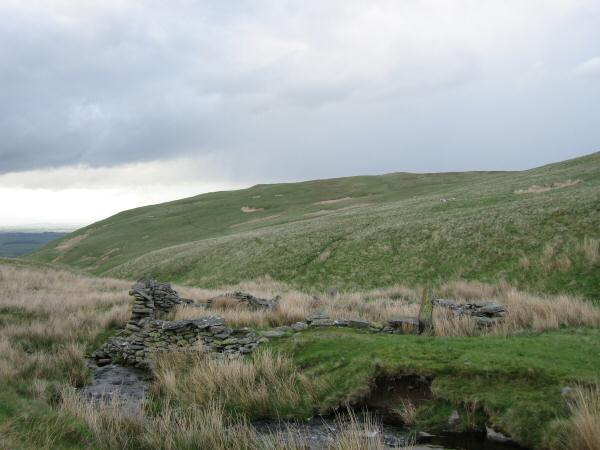 The remains of the sheepfold by Swarth Beck