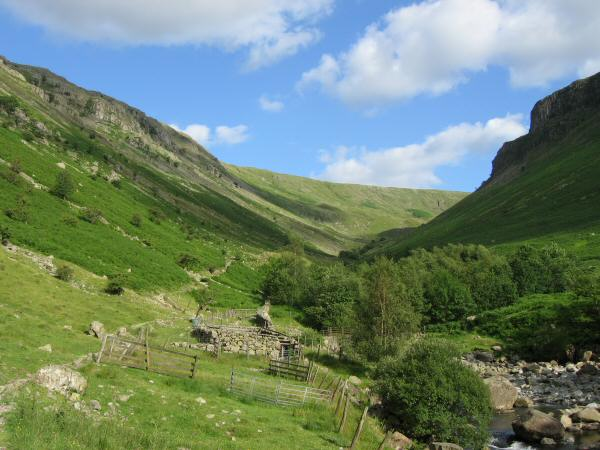Looking up Greenup Gill