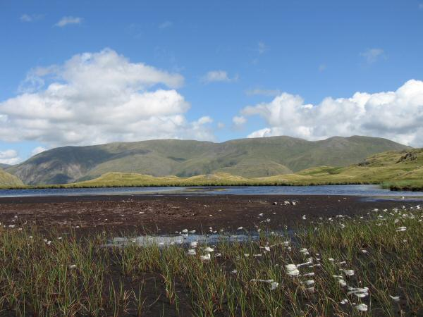The Helvellyn range from the largest of the Steel Fell ridge tarns