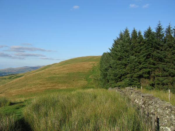 The path to Broom Fell across Widow Hause