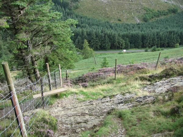 The stile I used to exit Whinlatter Forest and get onto the open fell. A van on Whinlatter Pass road far below