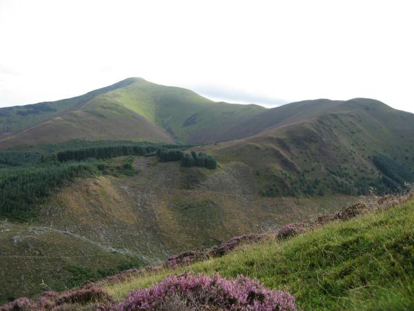 Grisedale Pike and Hobcarton End