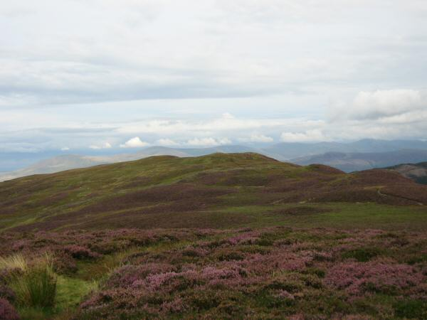 Whinlatter Top from Brown How