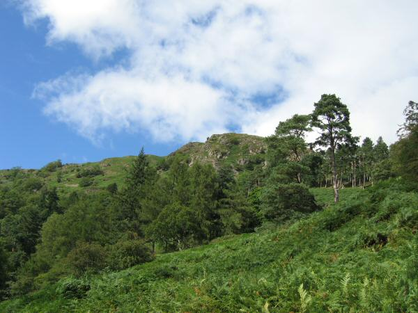 Looking up at Nab Scar from the old coffin road