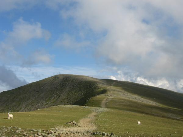 The path to Helvellyn bypassing Lower Man
