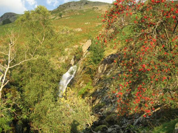 Waterfall, Fisherplace Gill