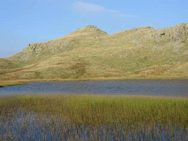 Looking across Tarn at Leaves to Bessyboot's summit