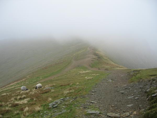 The col between Nethermost Pike and Helvellyn