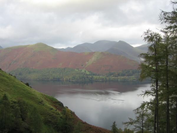 Catbells from Cat Gill