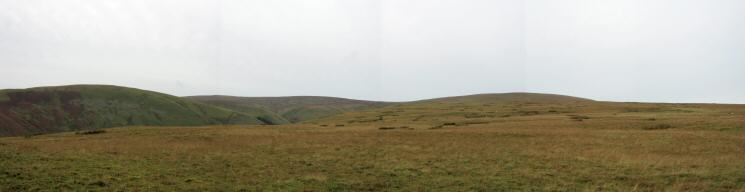 Panorama of grass from The Pen