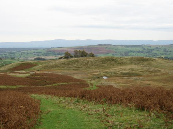 The path heading to Drybarrows with Cross Fell the high point on the skyline