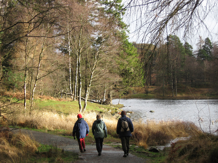 Walking the path round Tarn Hows