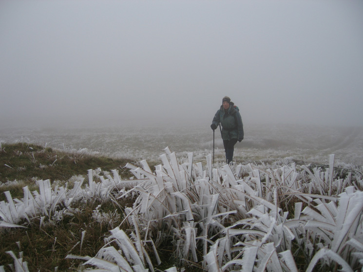 A heavy hoarfrost on the ascent of Blease Fell