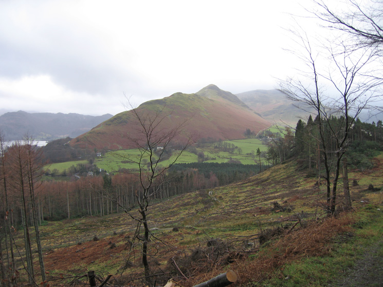 Catbells from Swinside