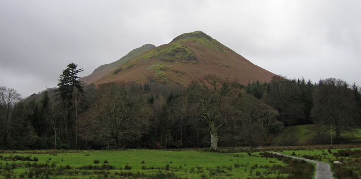 Skelgill Bank with Catbells' summit behind
