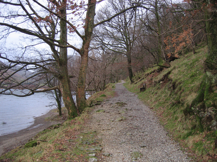 The track to Hartsop Hall by the side of Brothers Water