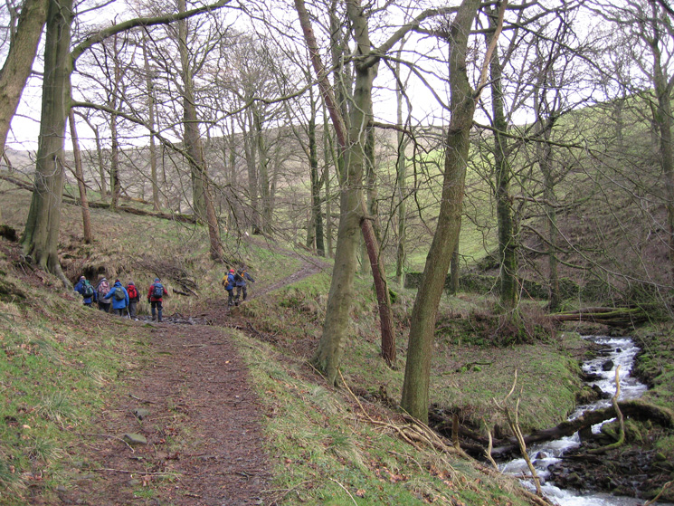 The track through Little Mearley Wood