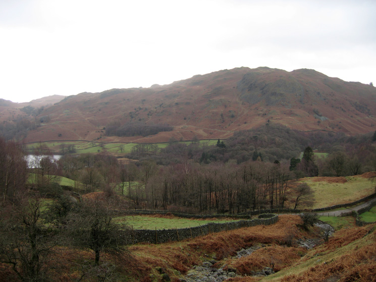 The view across to Loughrigg Fell from by Dunney Beck