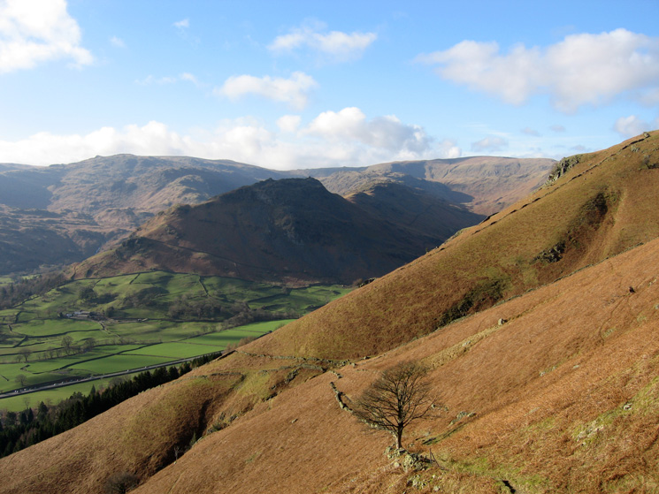 Looking back to Helm Crag from the traverse