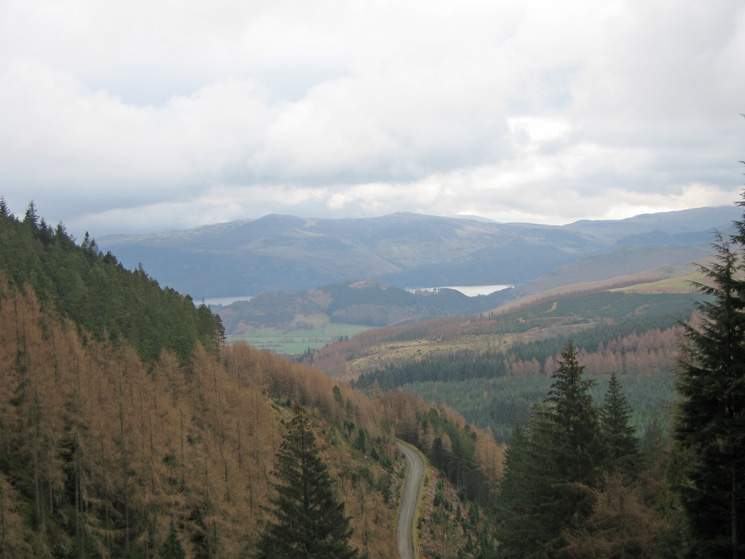 Looking out across Whinlatter Forest to Derwent Water and the central fells
