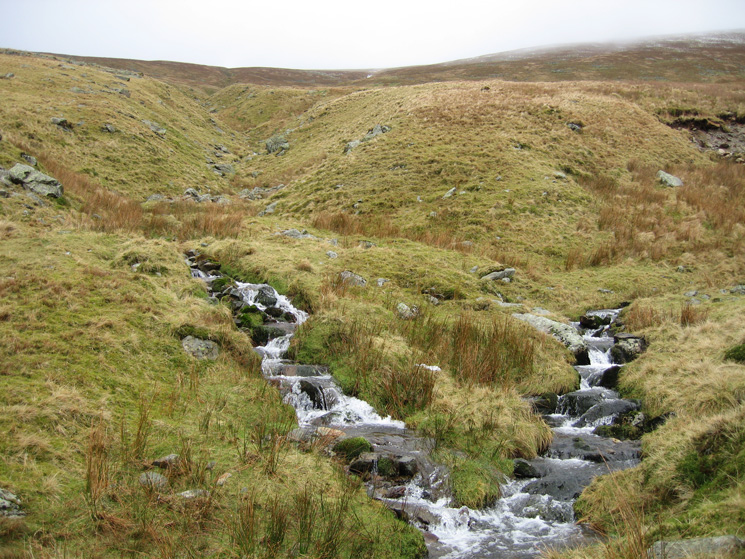 Beck junction, we took the left hand stream to head for Brownrigg Well and Helvellyn's summit